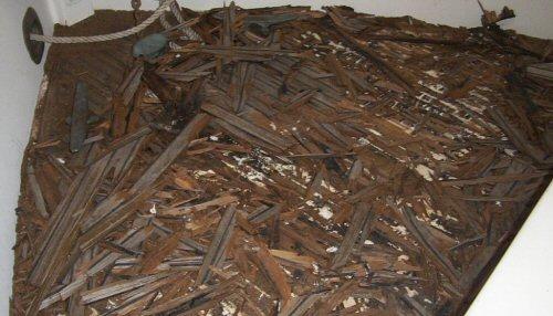Teak debris from deck removal
