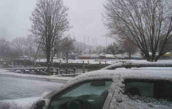 Snow day?